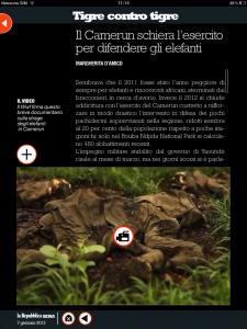 Tigre contro tigre - Il Camerun schiera l'esercito per difendere gli elefanti - di Margherita d'Amico - Repubblica sera