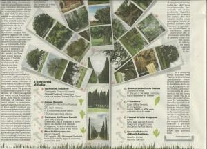 la Repubblica 20 gennaio 2013