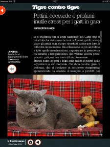 Tigre contro tigre - Pettini, profumi e coccarde: inutili stress per i gatti in gara - di Margherita d'Amico - Repubblica sera