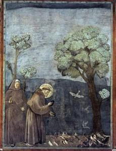La predica agli uccelli di Giotto - Storie di San Francesco nella Basilica Superiore di Assisi